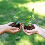 cropped-view-of-girls-holding-ground-with-seedlings-in-hands-e1616509206232.jpg