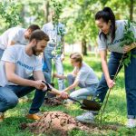 young-volunteers-planting-trees-in-green-park-together.jpg